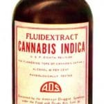 Cannabis Indica Cannabidiol Novell Food