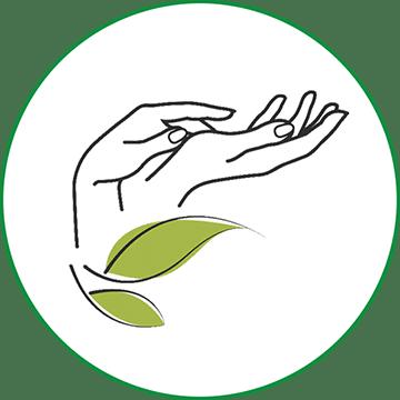Themenwelt CBD Cannabis als Kosmetik Wundsalbe Heilsalbe Tattoos