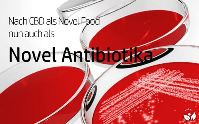 Neue Studie: CBD als Novel Antibiotika