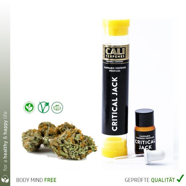 Cali Terpene Cannabis Critical Jack