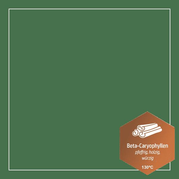 Beta-Carophyllen - (Terpene - heilende Öle der Natur)