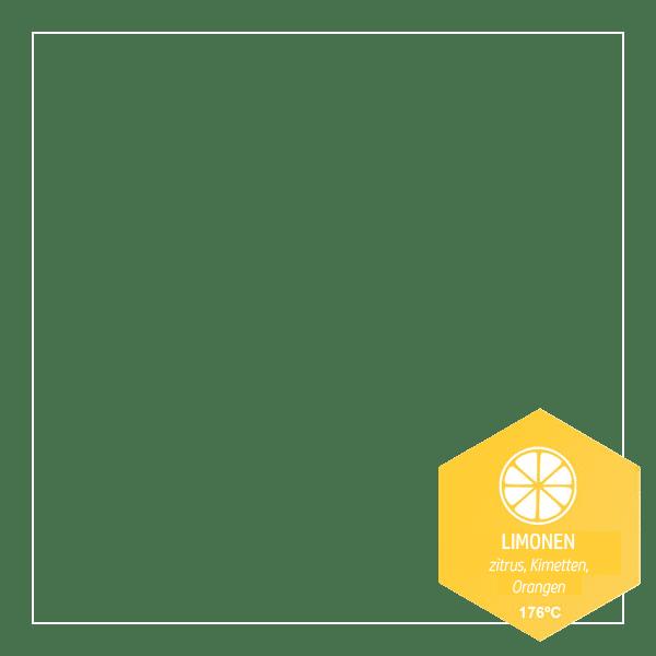 Limonen - (Terpene - heilende Öle der Natur)