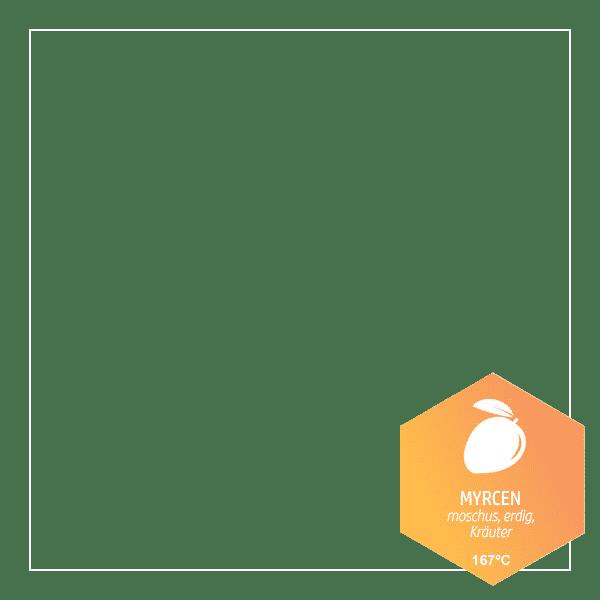 Mycren - (Terpene - heilende Öle der Natur)