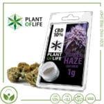 CBD Pollen (Hash) solid Plant of Life 10% CBD Purple Haze