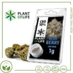 CBD-Hash-Solid-Plant-of-Life-Blueberry-10%-(2)