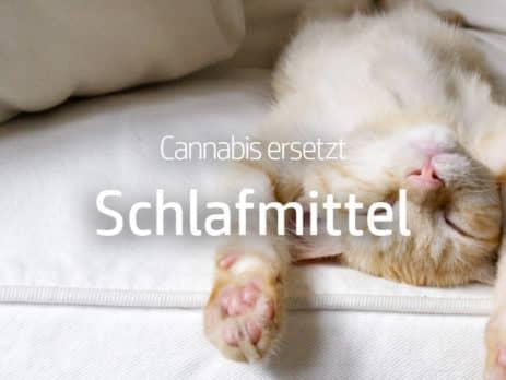 Cannabis kann Schlafmittel ersetzen