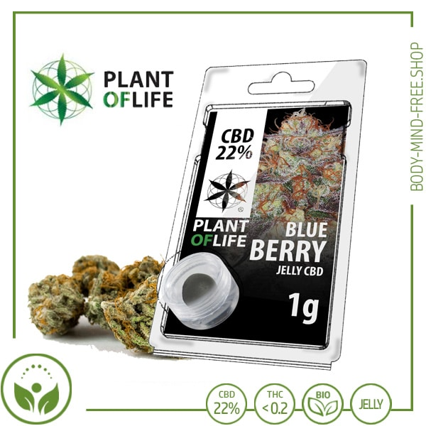 22% CBD Jelly solid Plant of Life 10% CBD Blueberry