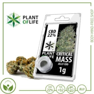 22% CBD Jelly solid Plant of Life 10% CBD Critical Mass