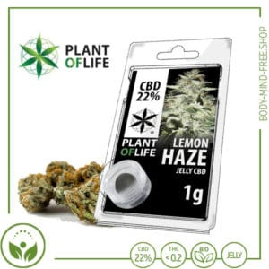 22% CBD Jelly solid Plant of Life 10% CBD Lemon Haze