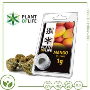 22% CBD Jelly solid Plant of Life 10% CBD Mango