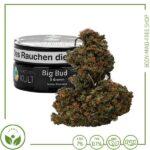 Big Bud CBD Blüten 7% CBD Aromakult Österreich 5gr Dose