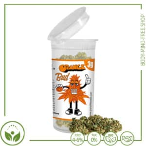CBD Blüten Plant of Life Spanien Orange Bud