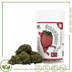 CBD Blüten Plant of Life Spanien Srawberry
