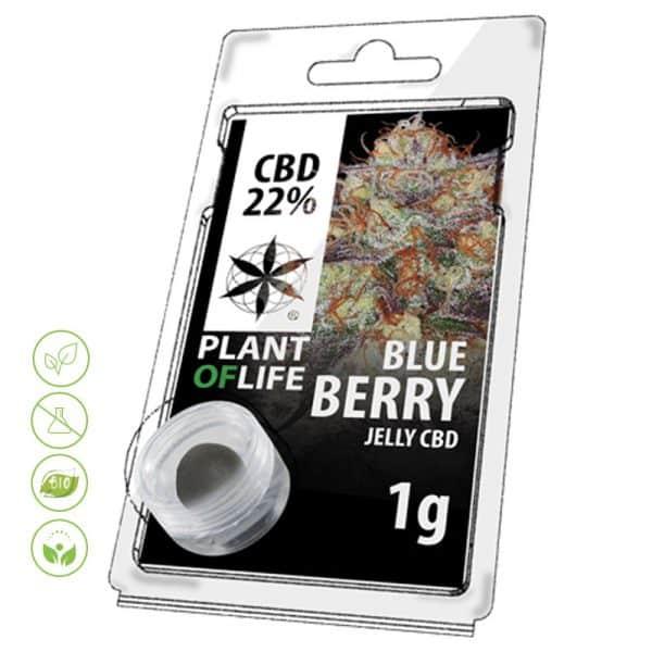 CBD Blüten Jelly Blue Berry von Planet of Life