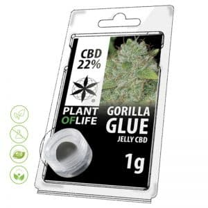 CBD Blüten Jelly Gorilla Glue von Planet of Life