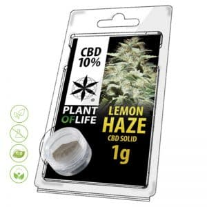 CBD Blüten Solid Lemon Haze von Planet of Life