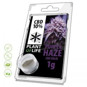 CBD Blüten Solid Purple Haze von Planet of Life