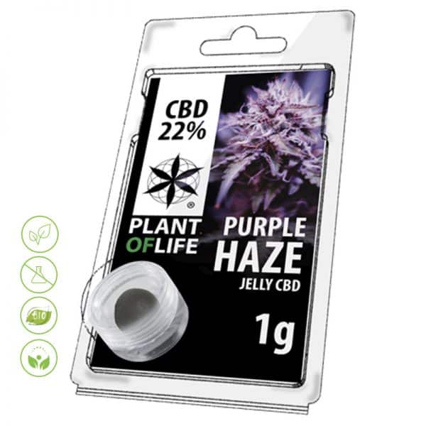 CBD Blüten Jelly Purple Haze von Planet of Life