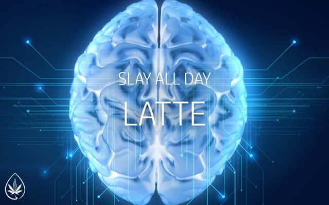 Slay All Day Matcha Latte