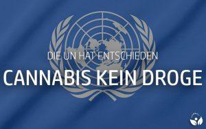 UN hat entschieden: Cannabis keine gefährliche Droge