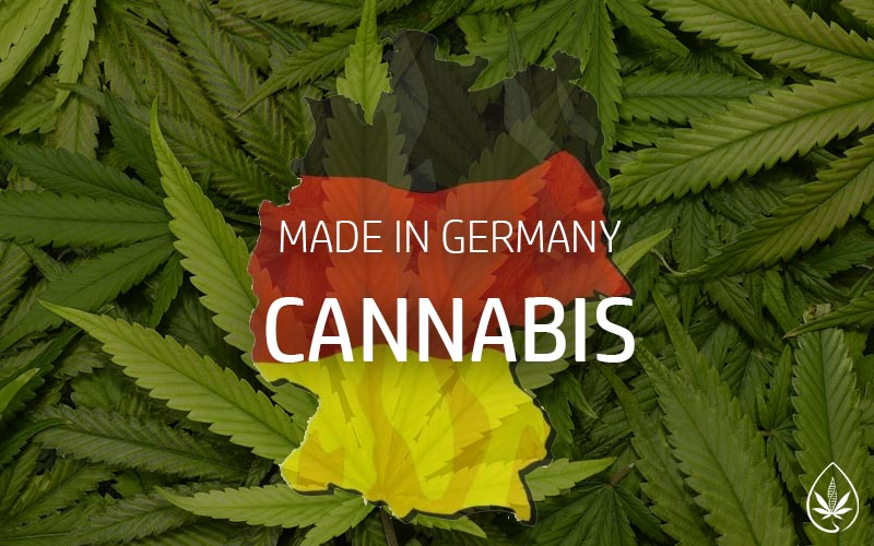 Cannabis made in Germany