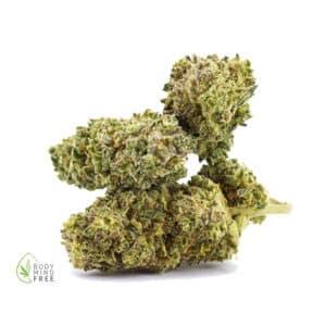 Limoncello CBD Blüten 16% CBD von Glow 420 Blüte